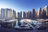 Dubai Marina at sunset, United Arab Emirates - 183681521