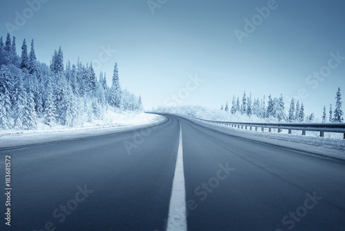 Wall mural road in winter forest