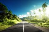 empty road in jungle of Seychelles islands - 183681722