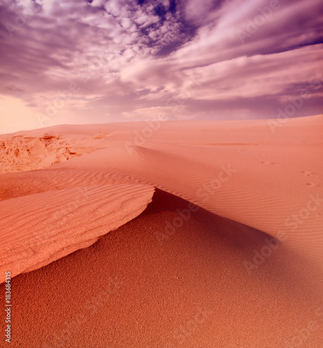 Foto op Canvas Koraal Sunset over the Sahara Desert