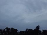 Paysage ciel et foret