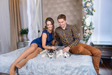 Beautiful young couple in the New Year atmosphere with puppies of the Husky - 183690744