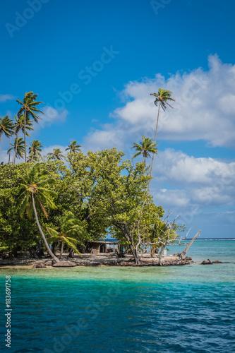 Poster Tropical strand Beach shack
