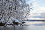 Beautiful view of snowy trees and Lake Pyhäjärvi in the winter in Tampere, Finland. - 183716310