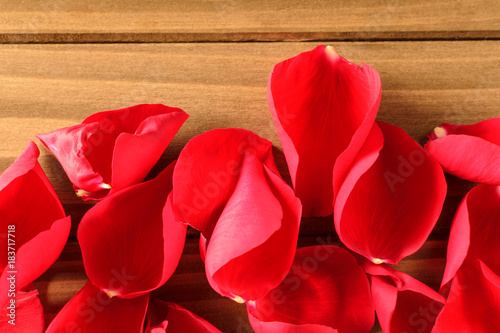 Scattered red rose petals on wooden background with copy space for your own text
