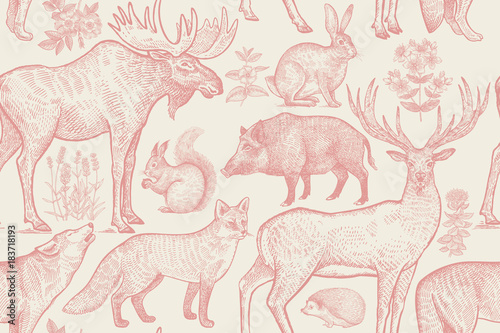 Seamless pattern with animals and flowers. - 183718193