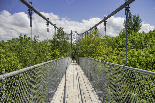 Wall mural Suspension bridge in Collinwood, Ontario