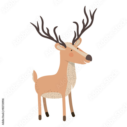 deer cartoon with long horns colorful silhouette in white background vector illustration