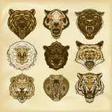 Illustrated set of wild animals - 183750394