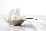 beauty still life with white orchids for concept of hygiene - 183809502