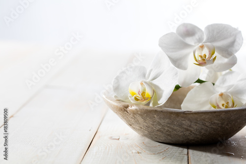 fragrance still life with pure white orchids in stone cup Poster