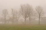 Walking in Fog - 183870517