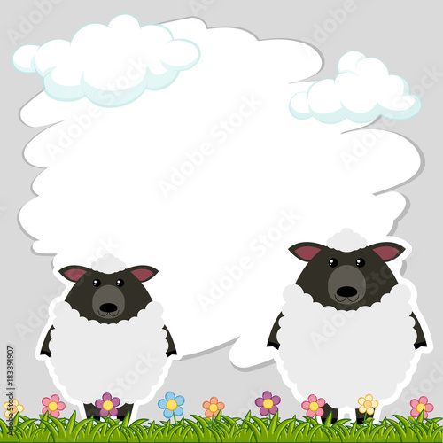 Border template with two sheeps