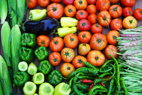 fresh farm picked vegetables isolated on white background