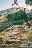 View from the Bulgarian Trail on Crete, Greece. Stone trail. Cobbles. Church on the top. - 183920560