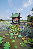 Cottage on a water and lotus flower - 183928904