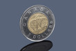The Canadian two-dollar coin on dark background
