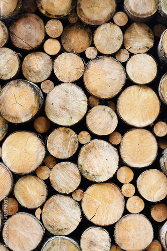 Tuinposter Brandhout textuur Many wood logs piled up, natural wooden texture as background