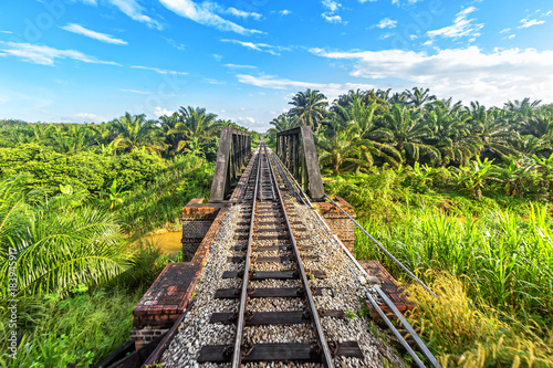Railway from Singapore to Bangkok in the jungle of  Malaysia. Poster