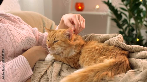 woman stroking red tabby cat in bed at home
