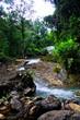 Beautiful View Waterfall - 183955969