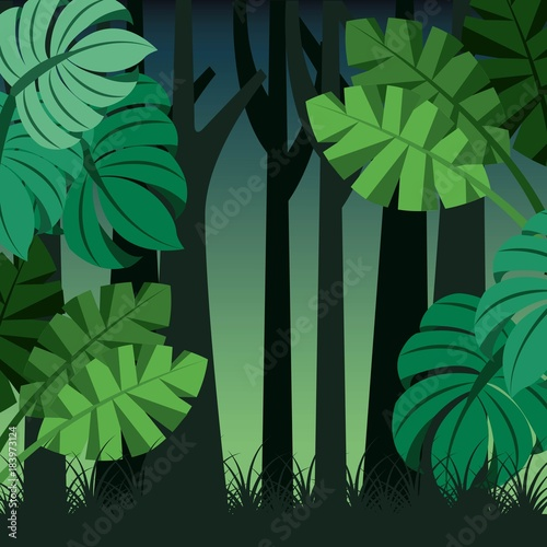 Wall mural tropical landscape trunks nature and palm leaves vector illustration