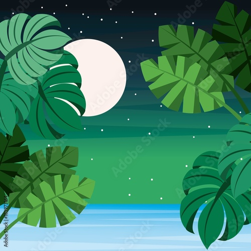 landscape tropical leaves palm sea full moon starry vector illustration