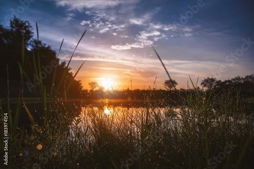 Plexiglas Zonsopgang Sunrise and grass close to a lake