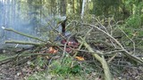 Fire and Camping - 183987193