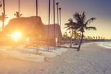 Beaches, tourist villages, resort, sea, sky, trips, tourism, landscapes, sun, seashell, dog, - 184057742