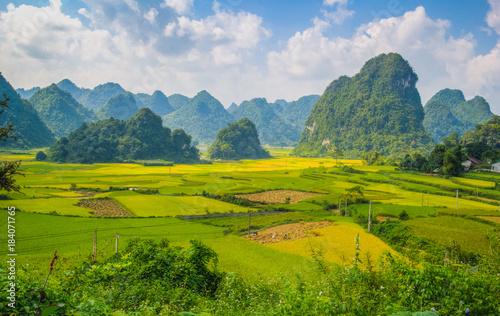 Fotobehang Pistache landscape vietnam