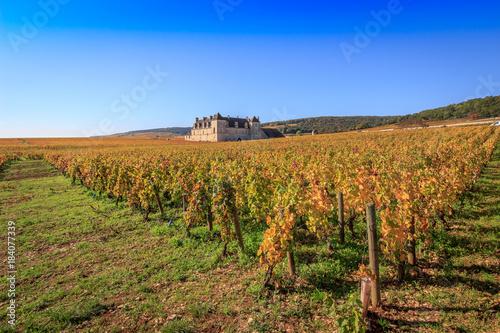Fotobehang Wijngaard Vignoble en Bourgogne