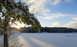 Winter landscape, sunrise. Wallpaper from Finland. Sunrise behind the snow covered pine tree. - 184086701