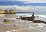Man Sits on Rock on Beach in Malibu California - 184111596