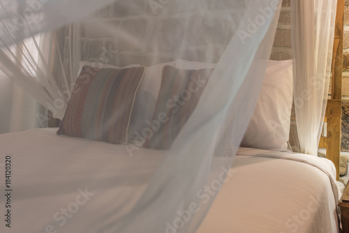 bed with mosquito net - 184120320
