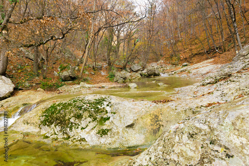 Wall mural River in the mountains background
