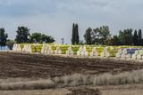 Cotton rolls in field - 184130559