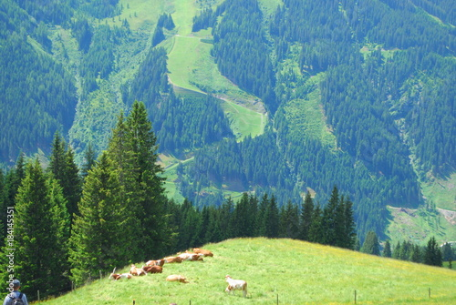 Foto op Aluminium Blauwe jeans Alpen view
