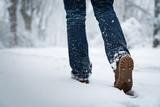 Im Schnee spazieren - 184161144