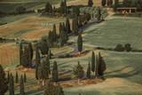 Beautiful tuscan landscape - 184166548