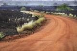 Frozen volcanic lava in the eastern Tsavo National Park in Kenya - 184200998