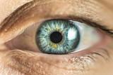 Human Female eye macro. Closeup shot of female gray - blue colour eye with day - 184208544