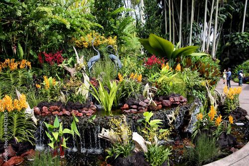 Nationaler Orchideen-Garten Singapur Poster