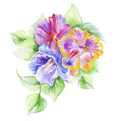 hibiscus in the summer garden. watercolor art.