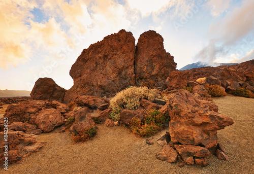 Deurstickers Beige Landscape of Tenerife Hinterland