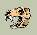T-Rex Skull Illustration Vector
