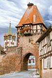 Chatenoix. La Tour des Sorcières et nid de cigognes. Bas Rhin. Alsace - 184252799
