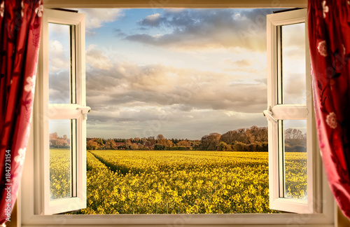 Fototapeta Window open with a view onto farm crops during sunset