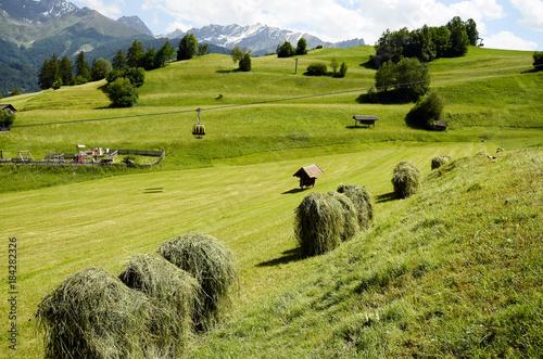 Poster Pistache Austria, Tirol, Agriculture