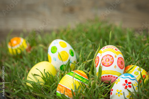 Foto op Canvas Gras Easter background on grass
